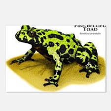 Fire-Bellied Toad Postcards (Package of 8)