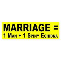 Marriage Equals ... (bumper sticker)