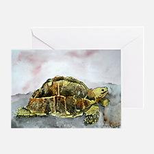 african desert tortoise land Greeting Card