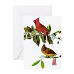 Cardinal Greeting Card