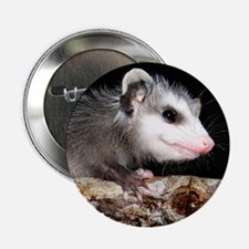 2.25 Possum Button