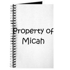 Funny Micah Journal