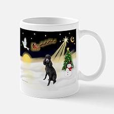 Night Flight/Poodle (Std) Mug