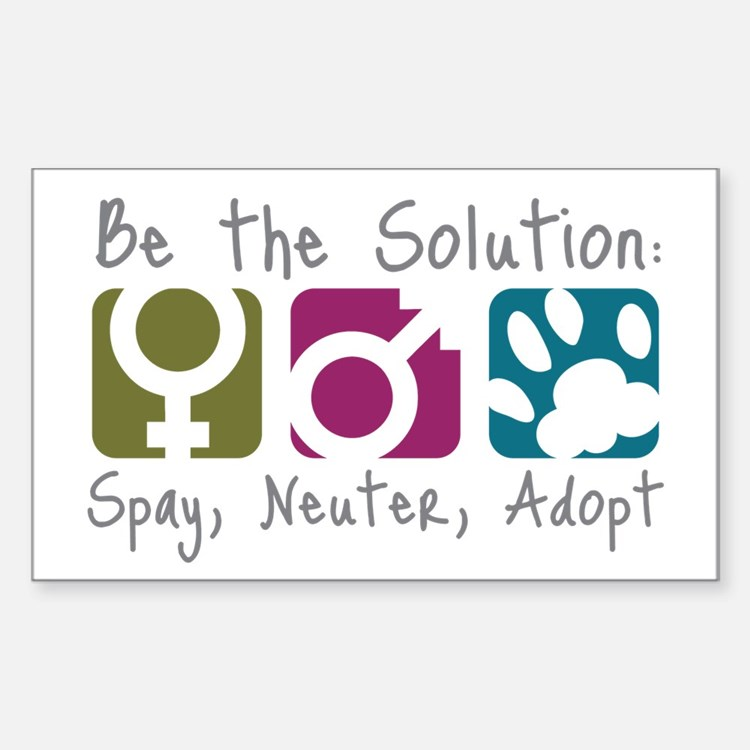 Be the Solution Rectangle Decal