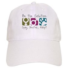 Be the Solution Baseball Cap