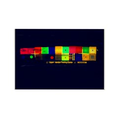 Color-Coded Chaos Rectangle Magnet (10 pack)