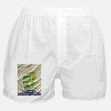 Alex Jones Constitution Boxer Shorts