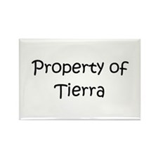 Cool Tierra Rectangle Magnet