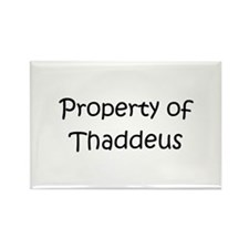 Cool Thaddeus Rectangle Magnet