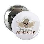 Forensic Anthropology Skull 2.25