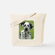 Dalmatian 9W008D-021 Tote Bag