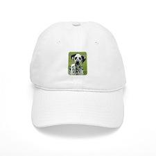 Dalmatian 9W008D-021 Baseball Cap
