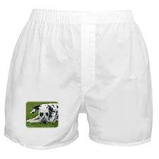 Dalmatian 9W008D-015 Boxer Shorts
