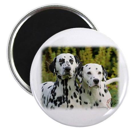 "Dalmatian 9T004D-448 2.25"" Magnet (10 pack)"