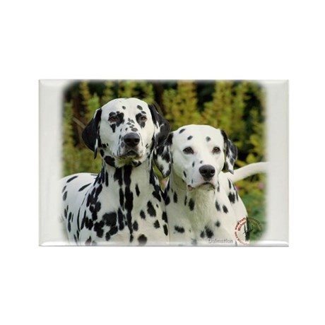 Dalmatian 9T004D-448 Rectangle Magnet