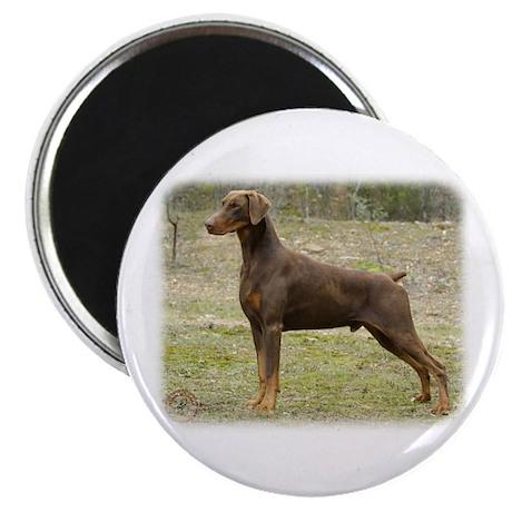 Dobermann 9K060D-01 Magnet