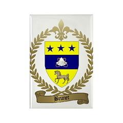 BRUNET Family Crest Rectangle Magnet (10 pack)