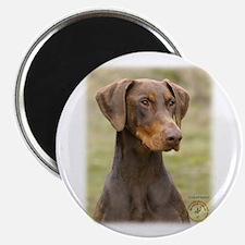 """Dobermann 9K060D-19 2.25"""" Magnet (100 pack)"""
