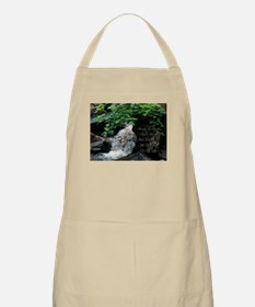 Surely Goodness and Mercy Wil BBQ Apron