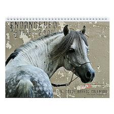 2009 Endangered Horses Wall Calendar