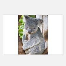 Koala Postcards (Package of 8)