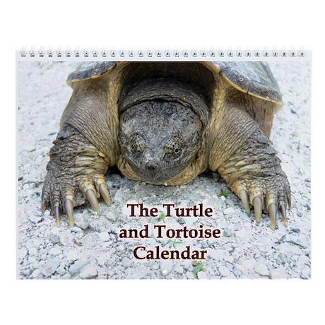 Turtle and Tortoise Wall Calendar