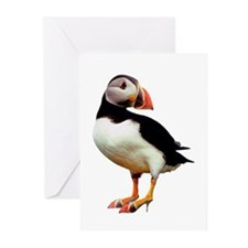 Puffin Wearing Shoes Note Cards (Pk of 10)