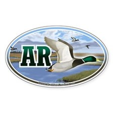 AR Arkansas Mallard Ducks oval car bumper sticker