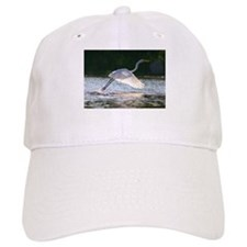 EGRET in SUNLIGHT Baseball Cap