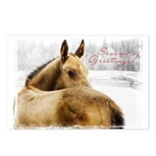 Akhal-Teke Holiday Postcards (Package of 8)