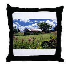 Cute Barns Throw Pillow