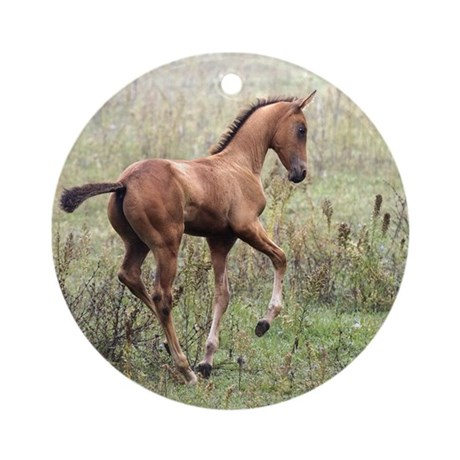 Playful Horse Foal Ornament (Round)