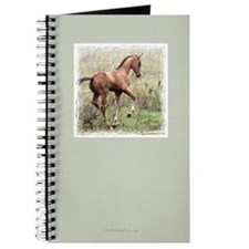 Playful Horse Foal Journal