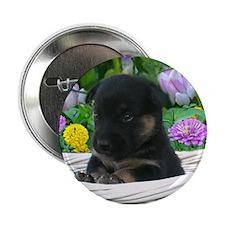 "Cute Flower basket 2.25"" Button"