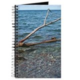 Beach driftwood notebook Journals & Spiral Notebooks