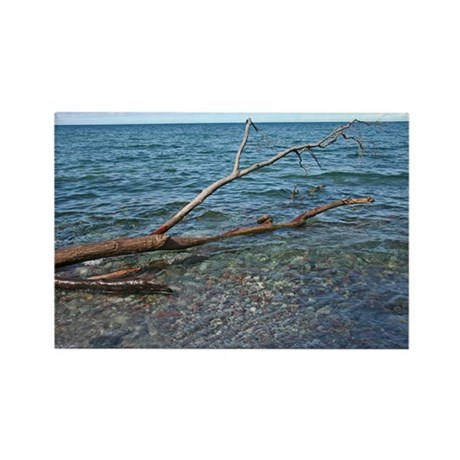 Driftwood On The Lake Rectangle Magnet (10 pack)