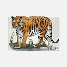 Bengal Tiger Rectangle Magnet