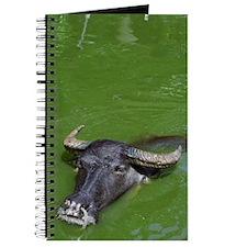 Water Buffalo Journal