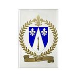 DUBAY Family Crest Rectangle Magnet (10 pack)