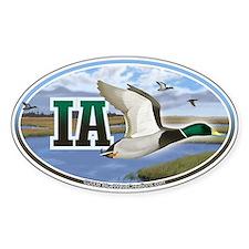 IA Iowa Mallard Ducks oval car bumper sticker