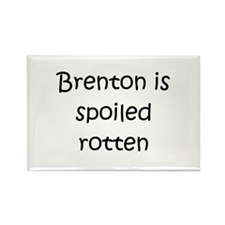 Cool Brenton Rectangle Magnet (10 pack)