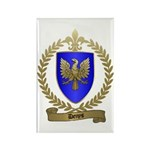 DENYS Family Crest Rectangle Magnet