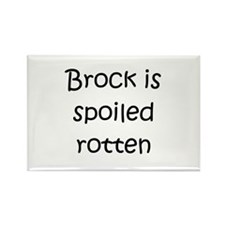 Funny Brock name Rectangle Magnet