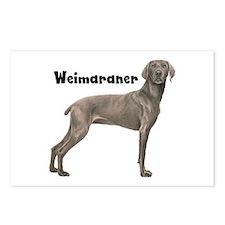 Weimaraner Postcards (Package of 8)