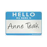 Anne Teak Rectangle Magnet (10 pack)