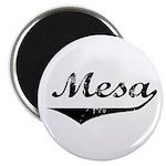 Mesa Magnet