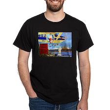 Anti Sarah Palin T-Shirt