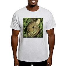 Baby Bunny Ash Grey T-Shirt