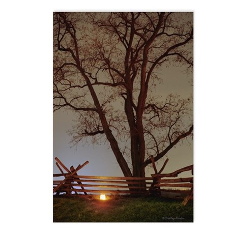 One Luminary (99) Postcards (Package of 8)