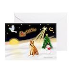 Night Flight/Shiba Inu #7 Greeting Cards (Pk/20)